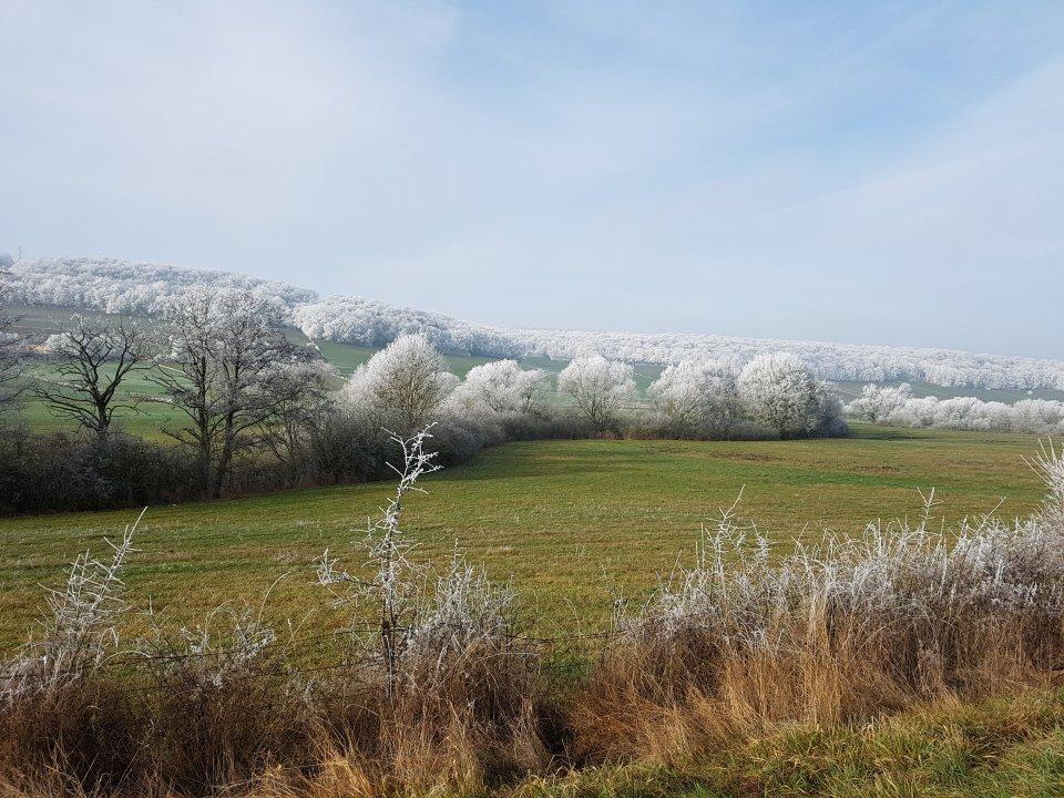Paysage de givre l\'hivers, est de la France